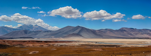 Incomparable Beauty in the Atacama Desert